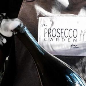 Prosecco Garden Apron